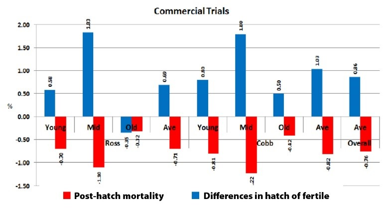 Synchro-Hatch%E2%84%A2%20lowers%20overall%20post-hatch%20mortality%20of%20chicks%20in%20farms_1515416688.jpg